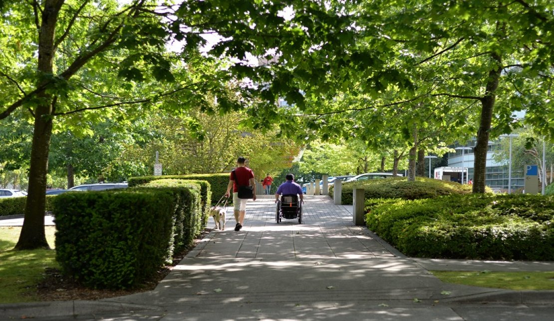 Wheelchair user and guide dog user take a walk