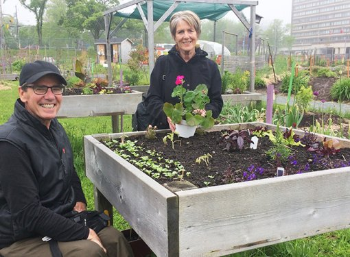 Two gardeners at Common Roots urban Farm in Halifax, Nova Scotia